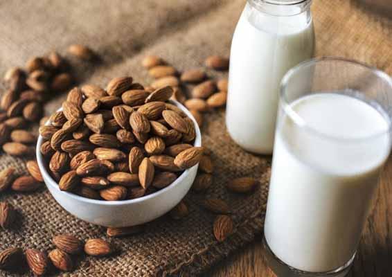 Hướng dẫn cách ngâm sữa hạt thời gian ngâm các loại hạt để làm sữa hạt